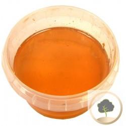 عسل الاوكالبتوس