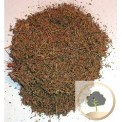 Artemisia herba alba's Seeds