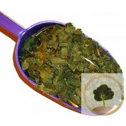 500 гр - Зизифус (Унаби) листья (ЦНИОКР)