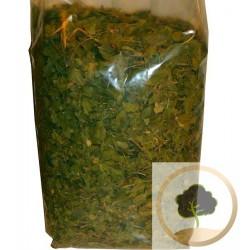 500 g - Feuilles de jujubier (sidr) roqya