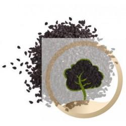 Nigella entera (semillas negras) - 250 g