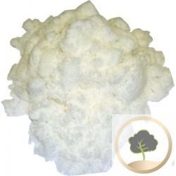 Pietra di allume in polvere