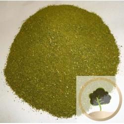 Azufaifo molido - 500 gr