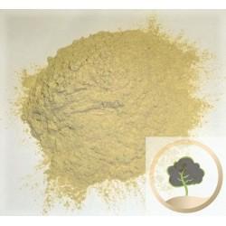 Palm pollen powder 20g