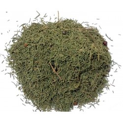 Moroccan Araar/juniper