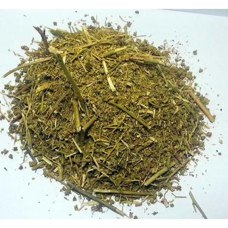 Ruta de Graveolens roślin (Figel)