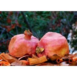 Pomegranate peel 150g