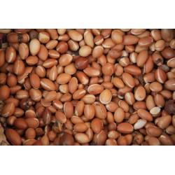 Organic argan oil for food