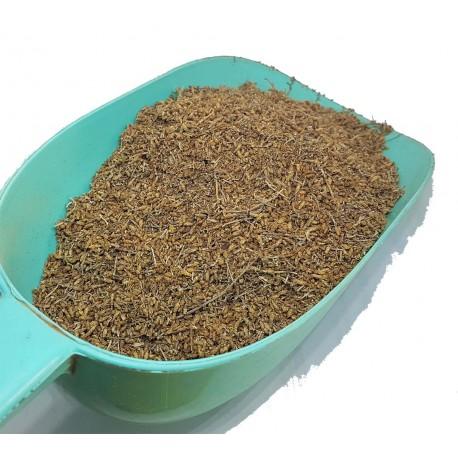Rośliny Artemisia lub CHIH