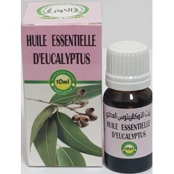 Essential oil of eucalyptus 10ml