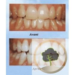 Dentifrice Oud Al Arak blancheur