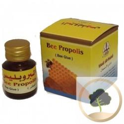 Bienen Propolis