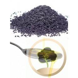 Schwarzkümmel-Öl - Al Morssala