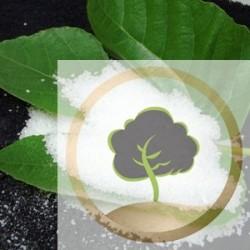 Polvere di allume naturale
