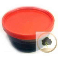 Flüssige schwarze Seife