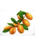 Najlepsze produkty Olej arganowy