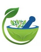 Лучшие продукты из травяного чая-настоя