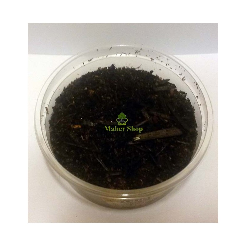 Incense Oud without alcohol